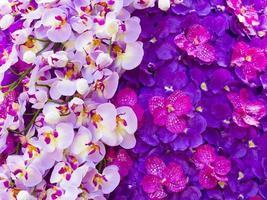 linda orquídea magenta artificial foto