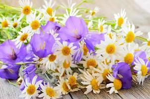 flores de campânula e camomila na mesa