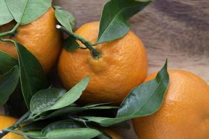 clementinas com folhas verdes foto
