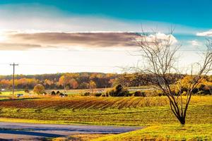 fazenda no outono foto