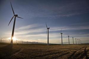 parque eólico canadá foto