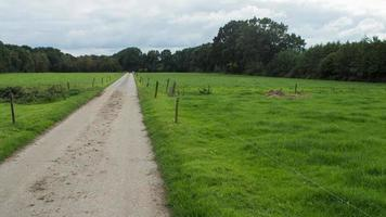 estrada de fazenda holandesa