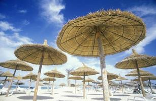 turismo de praia em afrika tunísia foto