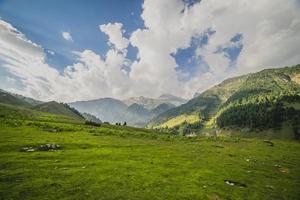 colinas verdes onduladas e um céu azul