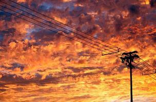 linhas telefônicas sobre nuvens brilhantes do pôr do sol