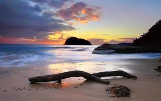 ilha do leão ao nascer do sol, austrália