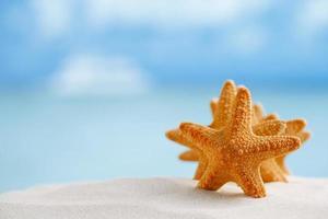 estrela do mar vermelha com oceano, praia, céu e paisagem marinha, dof raso foto