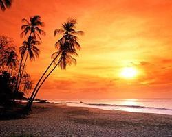 praia ao pôr do sol, tobago. foto