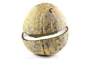 metades de coco