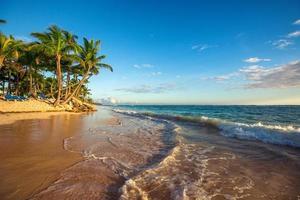 paisagem do paraíso tropical ilha praia