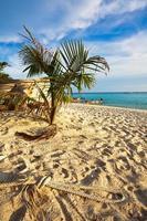 praia tropical exótica. foto