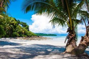 linda praia tropical com areia branca e águas azuis