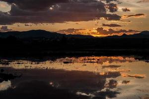 lindo pôr do sol refletido na água no milharal, chiang mai