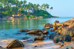 vista panorâmica do mar. pedras grandes e palmeiras altas