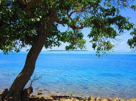 ilha do coco e águas tropicais