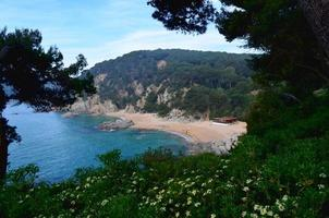 praia de areia com água azul clara em um dia ensolarado