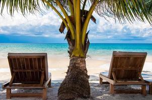 espreguiçadeiras em exótica praia de palmeiras foto