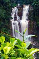 Cachoeira Ramboda