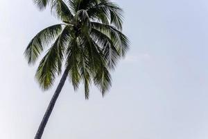 férias na praia