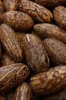 sementes de ráfia polida