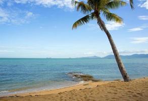 praia koh samui foto