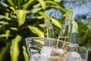 garrafas de cerveja com fatias de limão em balde de gelo foto