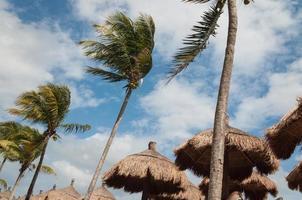 férias no caribe