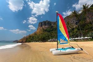 catamarã à vela na praia com palmeiras