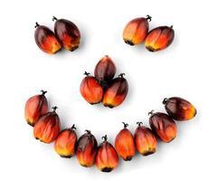 sementes frescas de óleo de palma