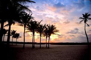 praia tropical florida