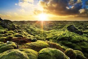 Eldhraun Sunrise