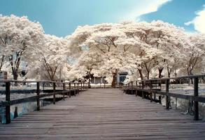 ponte de madeira com árvores de fundo