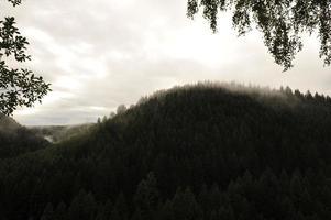 Okertal im Harz foto