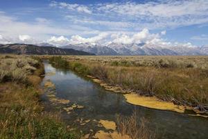 bela paisagem do parque nacional grand teton