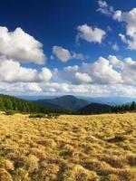 grama e nuvens foto