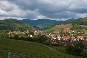 viagem rota do vinho na França. la route des vins.