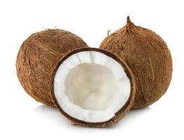 coco isolado no fundo branco foto