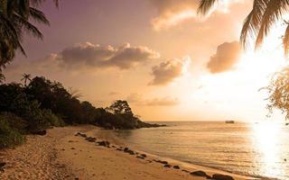 belo pôr do sol na praia tropical com palmeiras. koh phangan