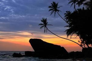 silhueta de palmeiras e rochas ao pôr do sol, unawatuna, sri lanka foto