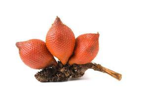 fruta salaca foto