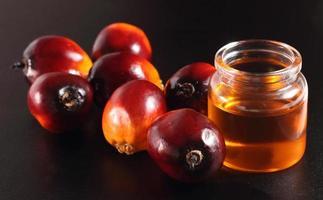 fruta de palma e óleo de cozinha foto