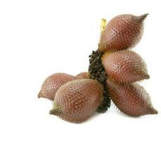 fruta zalacca isolada no fundo branco foto