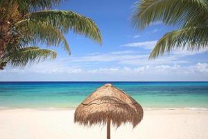 guarda-sol de palha em praia tropical foto