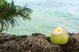 refresco de coco tropical
