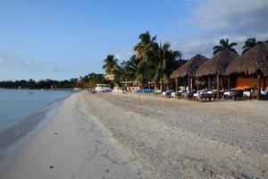 resort de praia na jamaica foto