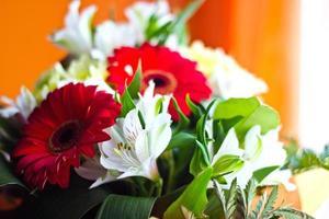 celebrando buquê de flores diferentes foto