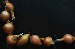 borda de cebolas em fundo de ardósia foto