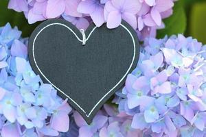 ardósia de coração com lindo fundo floral
