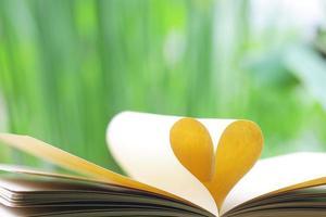 livro em forma de coração