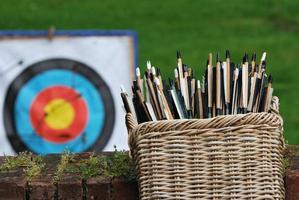 cesta de flechas com alvo foto